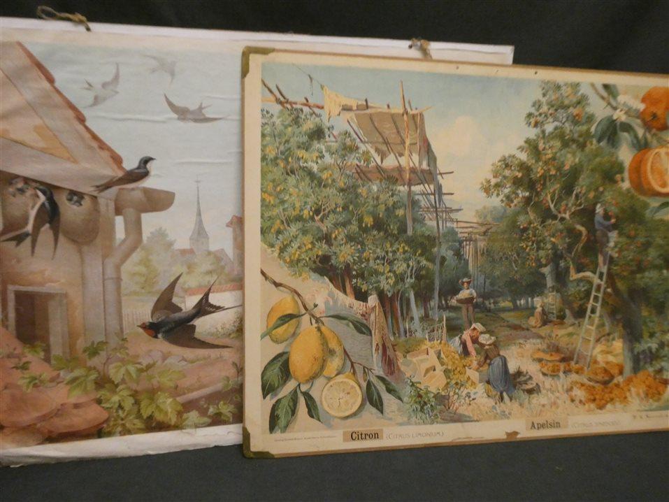 Auktion: 394 Objekt: 006
